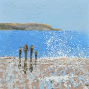 Image of Summer has arrived, Daymer Bay, Cornwall