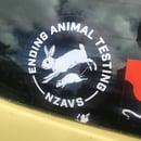 Image of STICKER - ENDING ANIMAL TESTING