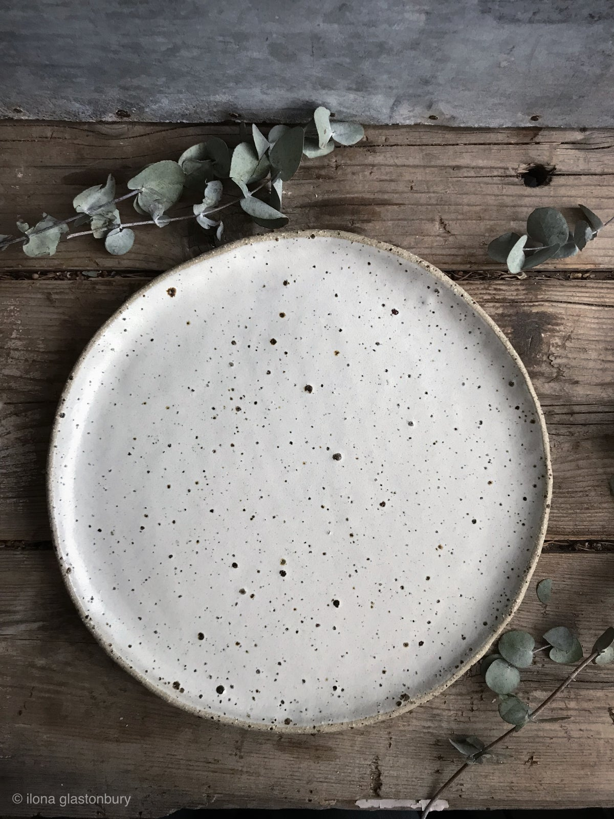 Image of Full moon plate