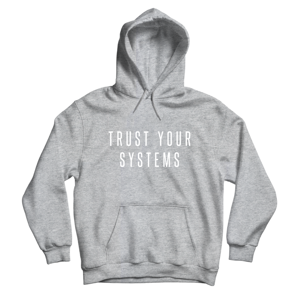Image of Trust Your Systems – Mantra Hoodie (Gray)