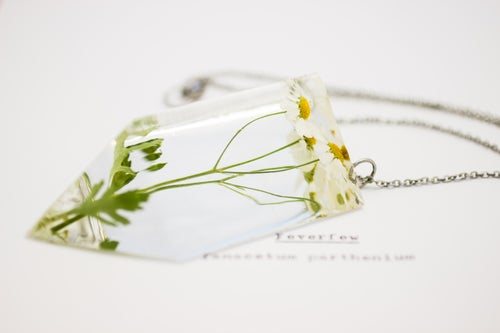 Image of Feverfew (Tanacetum parthenium) - Chunky Statement Piece #2