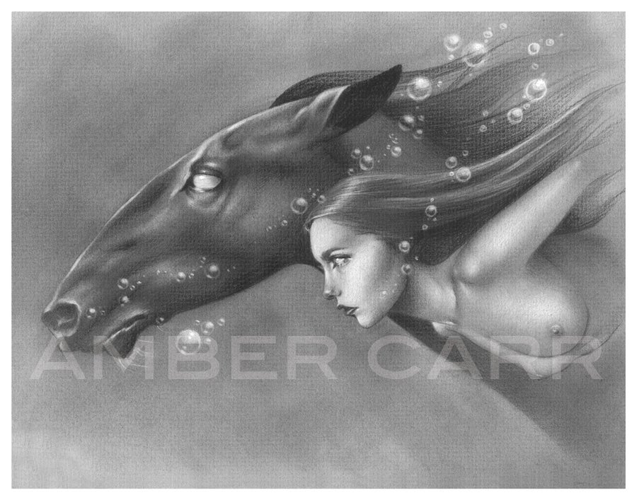 "Image of Kelpie 11"" x 14"" Print"