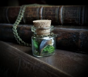 Image of Wolf Claw and Amethyst Curio Bottle Necklace