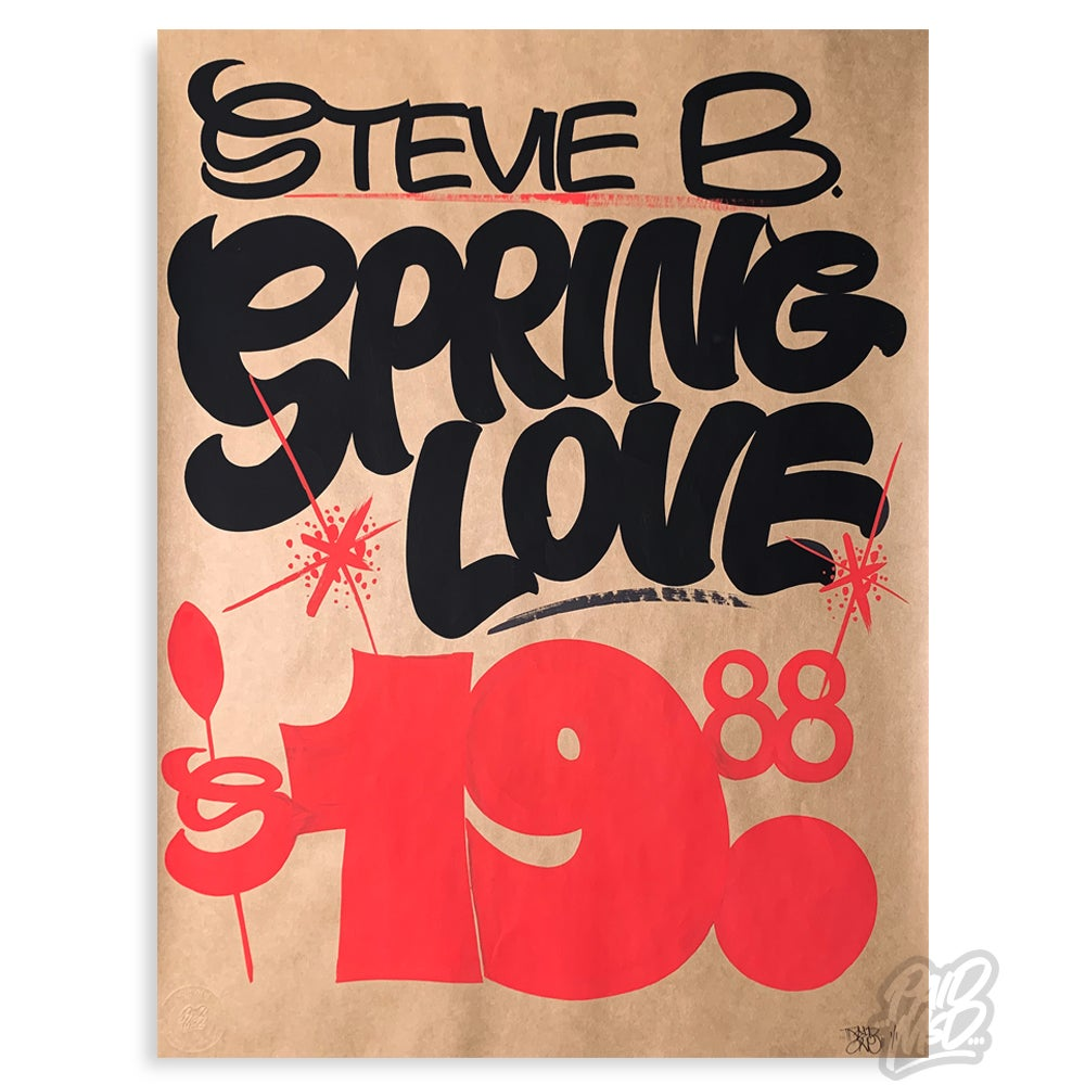 Image of Stevie B. - Spring Love
