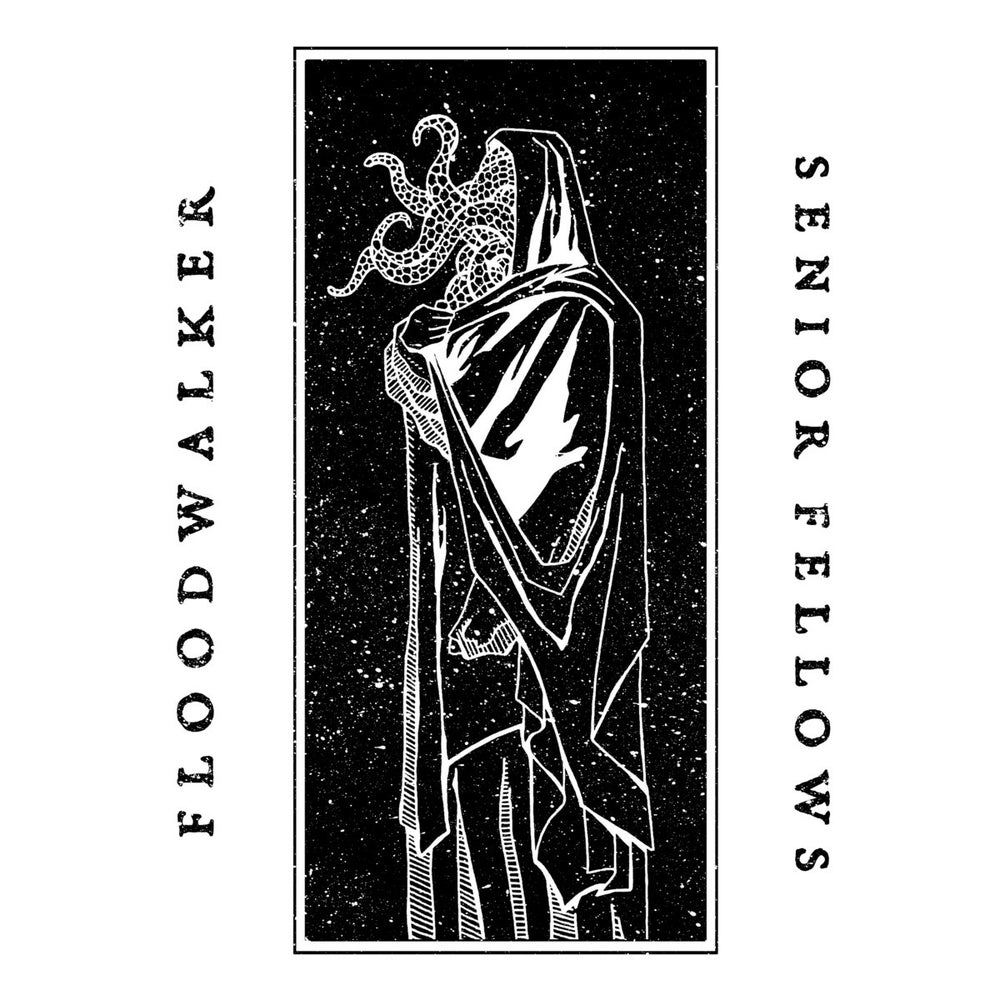"Image of Senior Fellows​ / ​Floodwalker ""split"" 10"" (/300)"