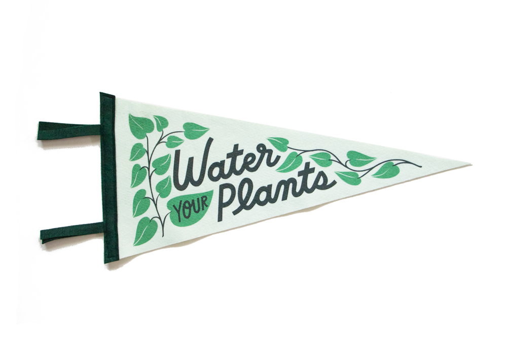 Image of Water Your Plants Felt Pennant