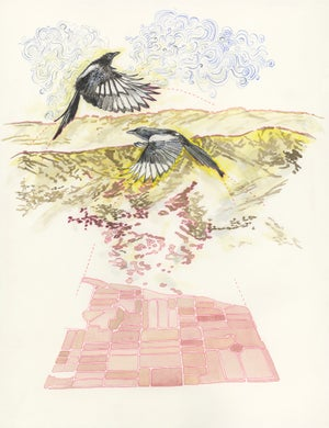 """""""The Magpies' Pink Cemetery Map"""" giclee print"""