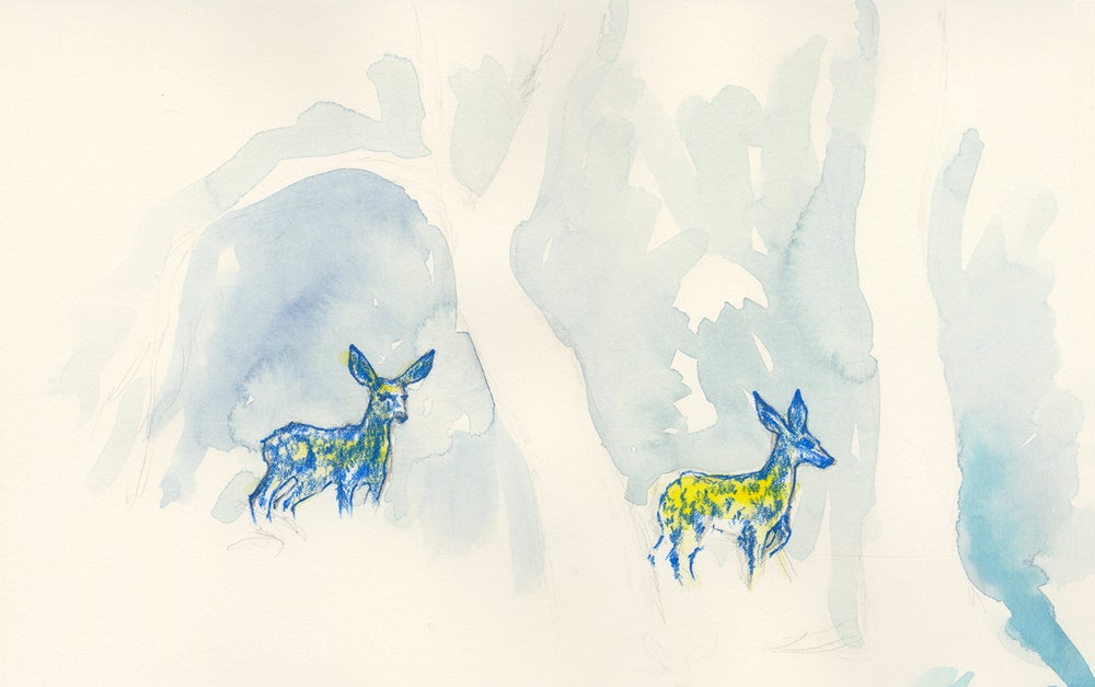 "Image of ""Fawns"" giclee print"