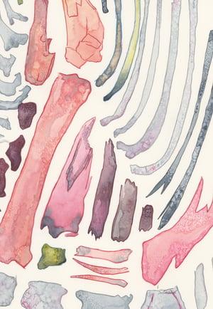 """Bones of an Unknown Beast"" giclee print"