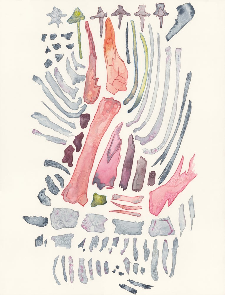 "Image of ""Bones of an Unknown Beast"" giclee print"