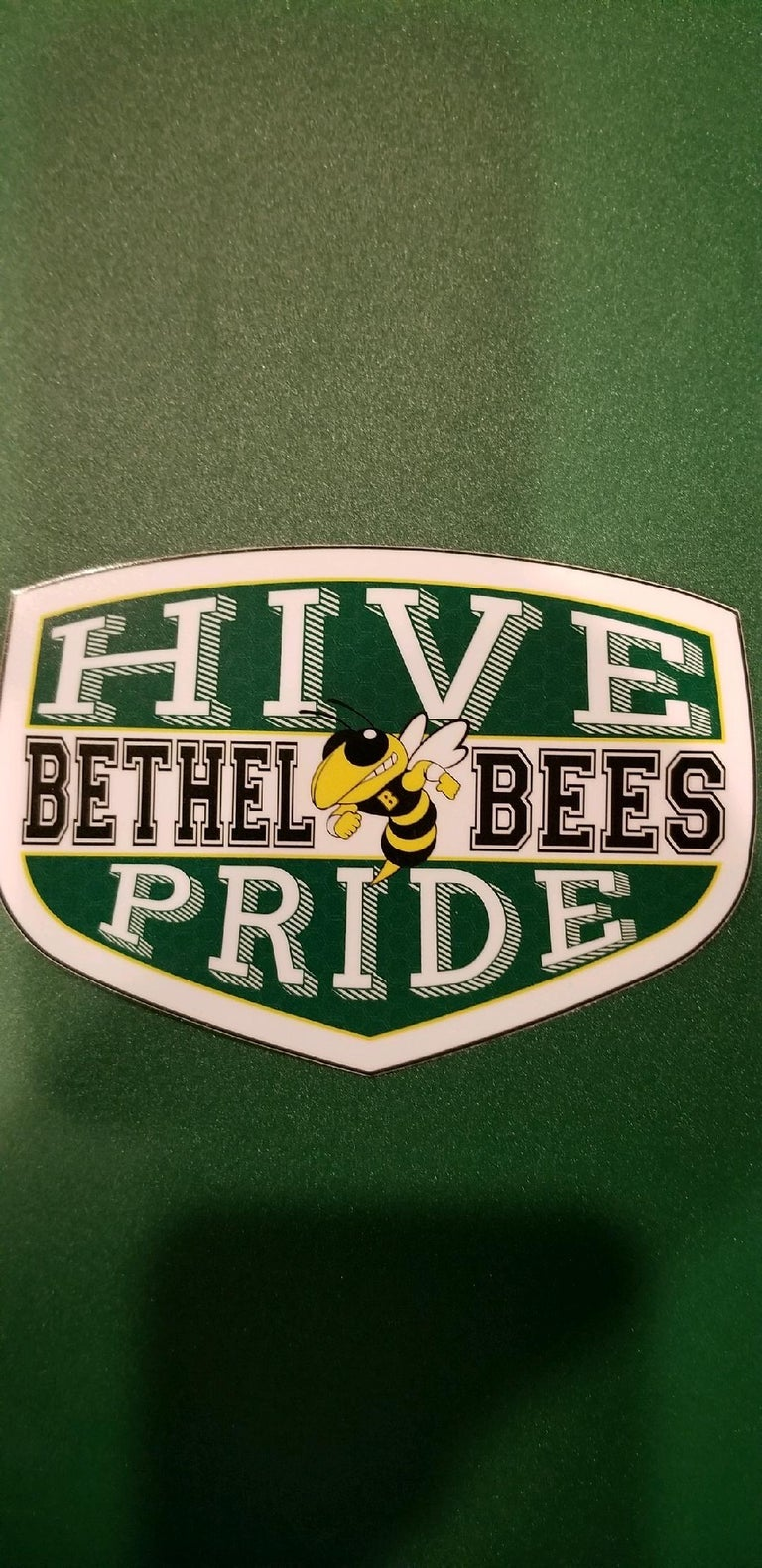Image of Car and window hive pride