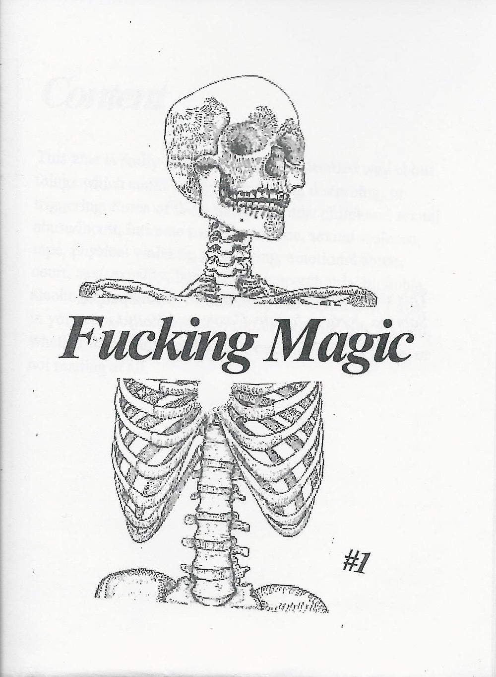Fucking Magic #1 (Zine)