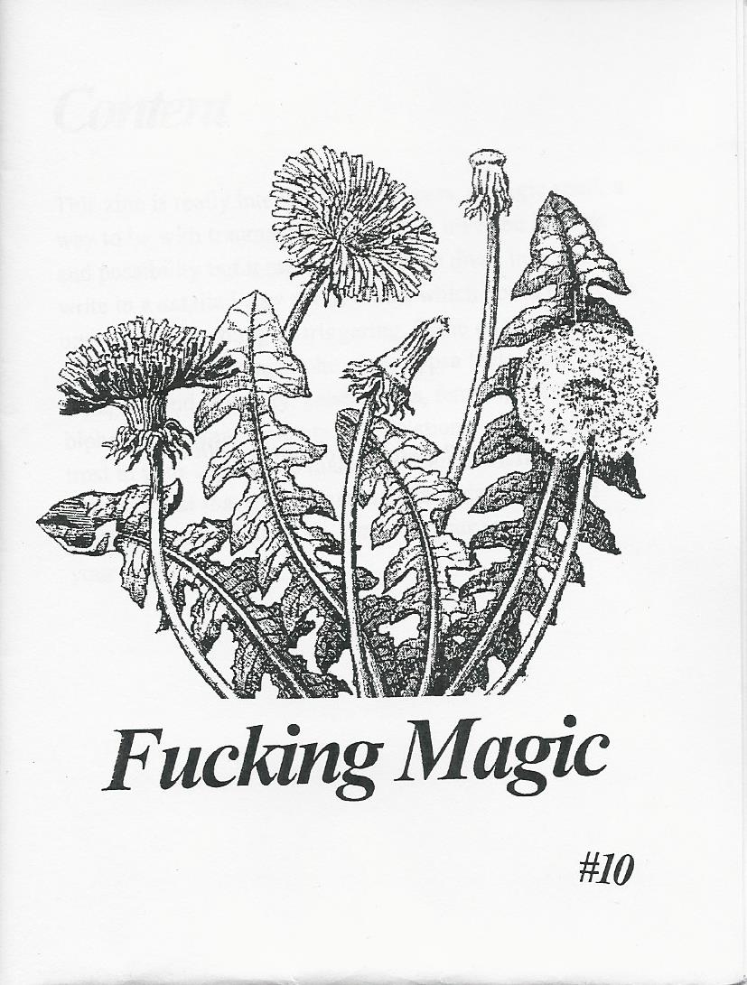 Fucking Magic #10 (Zine)