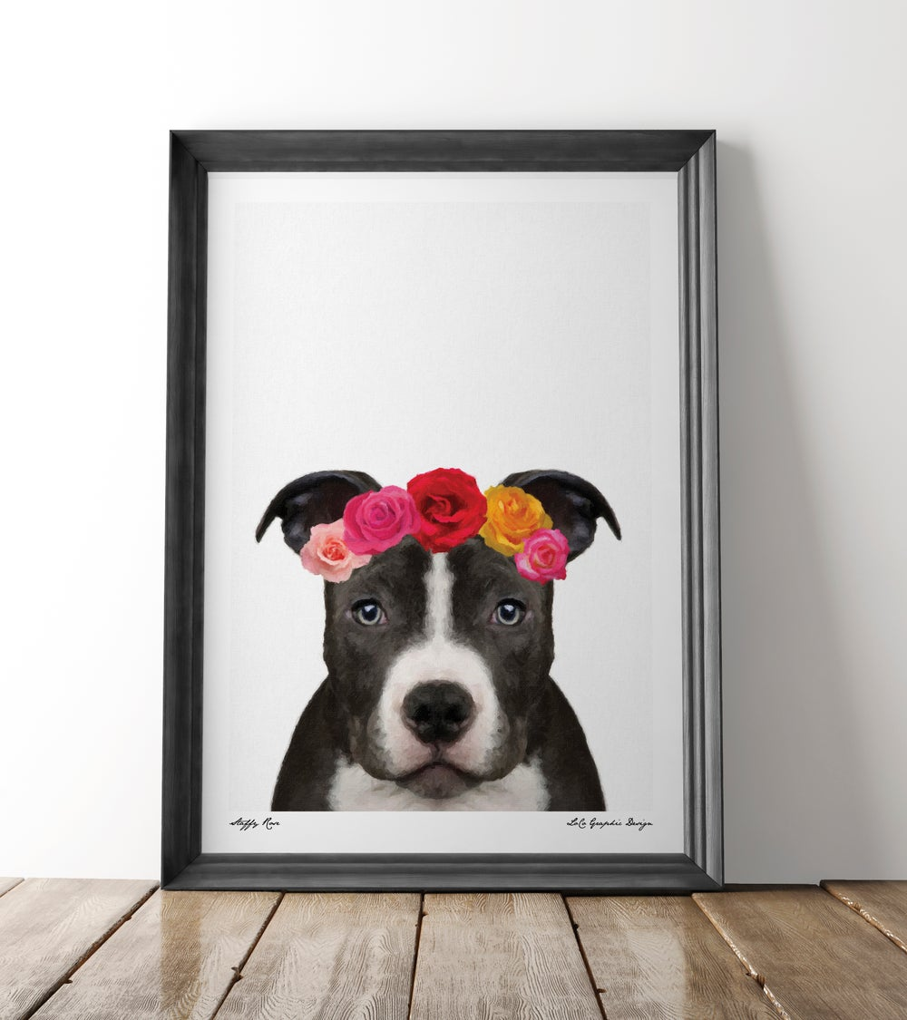 Image of Staffy Rose
