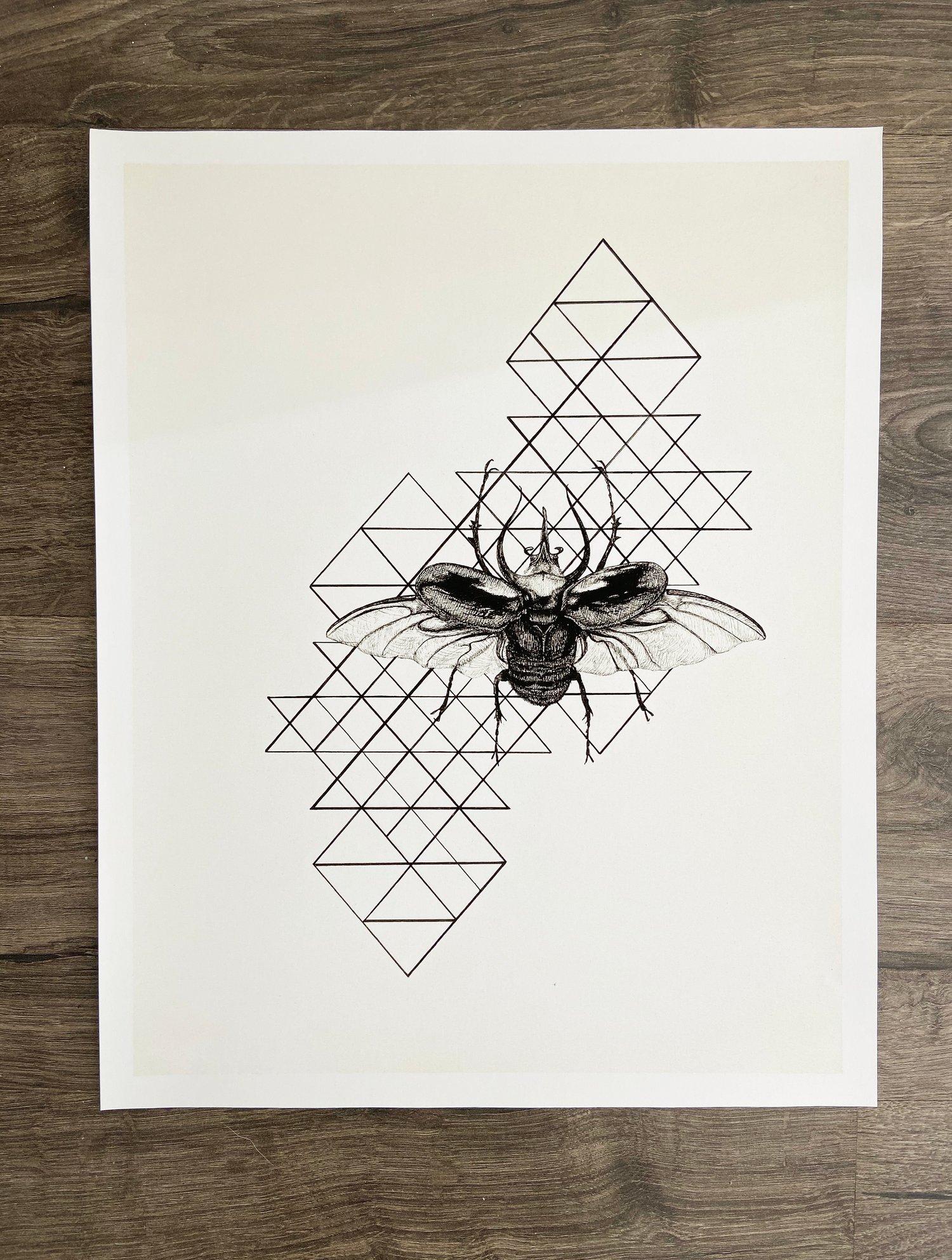 "Image of ""Chalcosoma atlas"" Giclee Print"