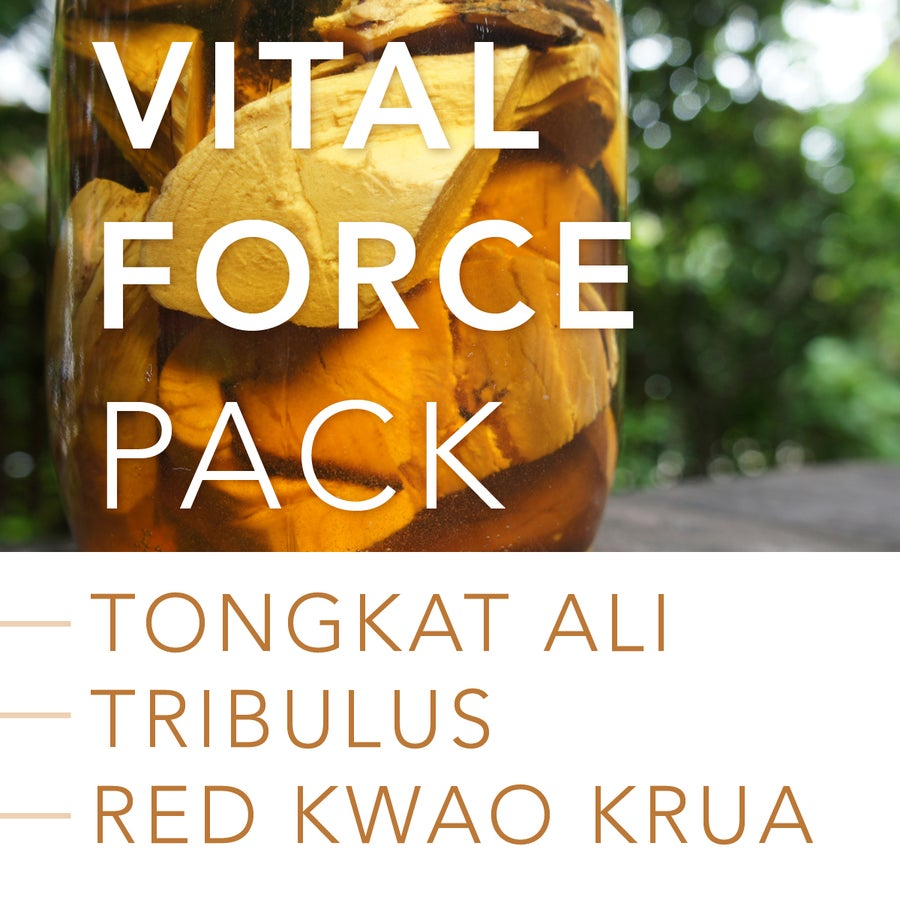 Image of VITAL FORCE PACK: Tongkat Ali, Tribulus Terrestris and Red Kwao Krua
