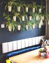 Wall Flower Vase