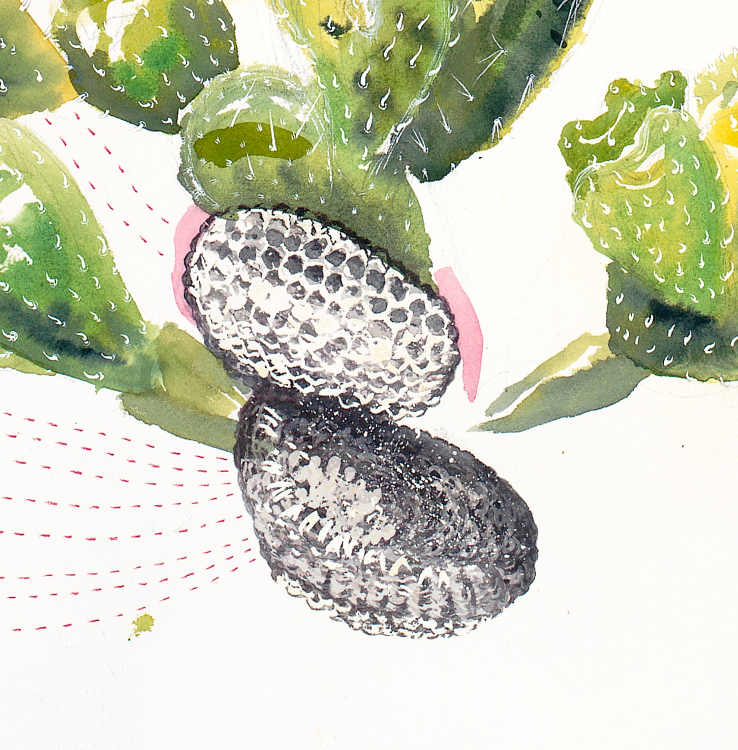 "Image of ""Loved by the Prickly Pear"" giclee print"