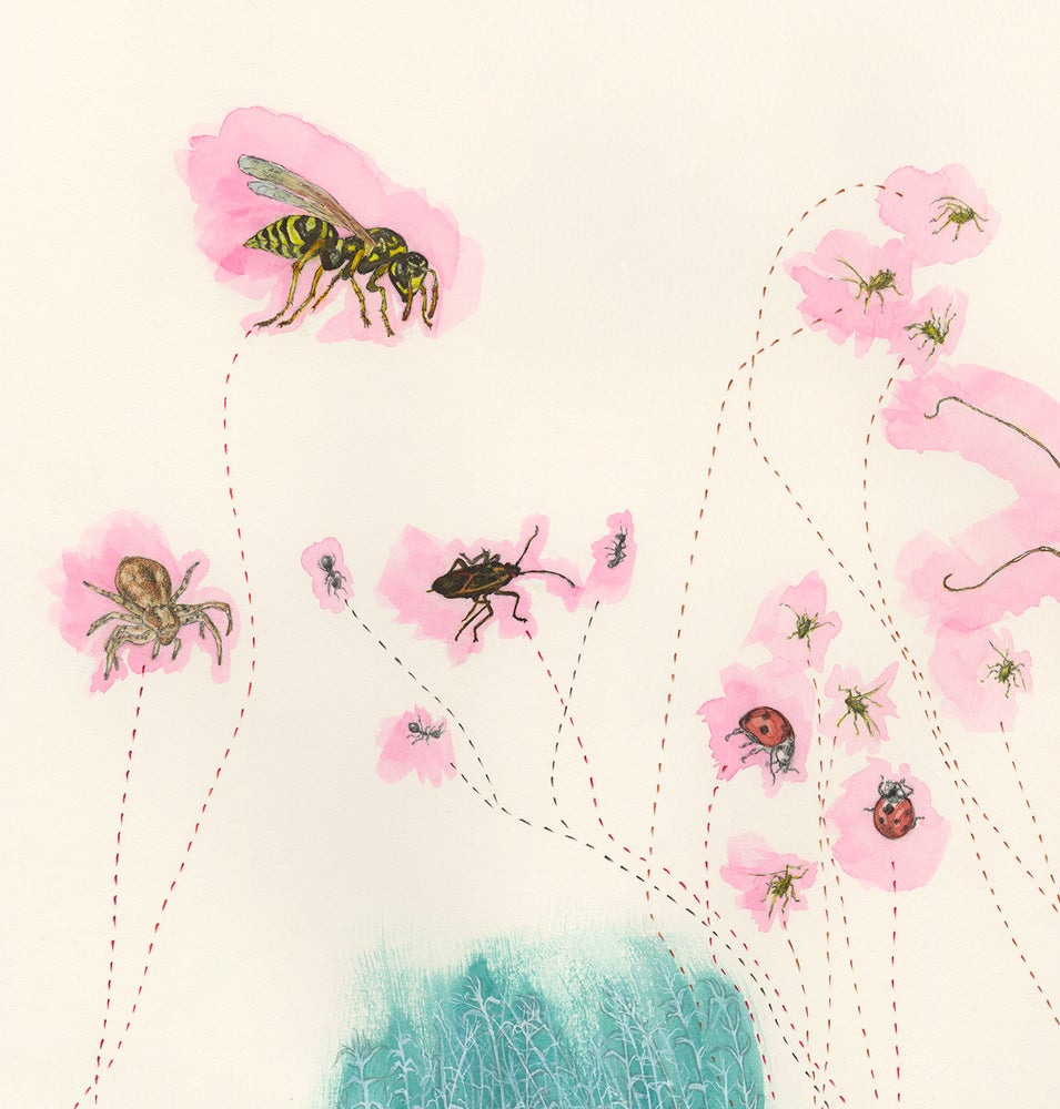 "Image of ""Meetings with Arthropods at a Thistle"" giclee print"