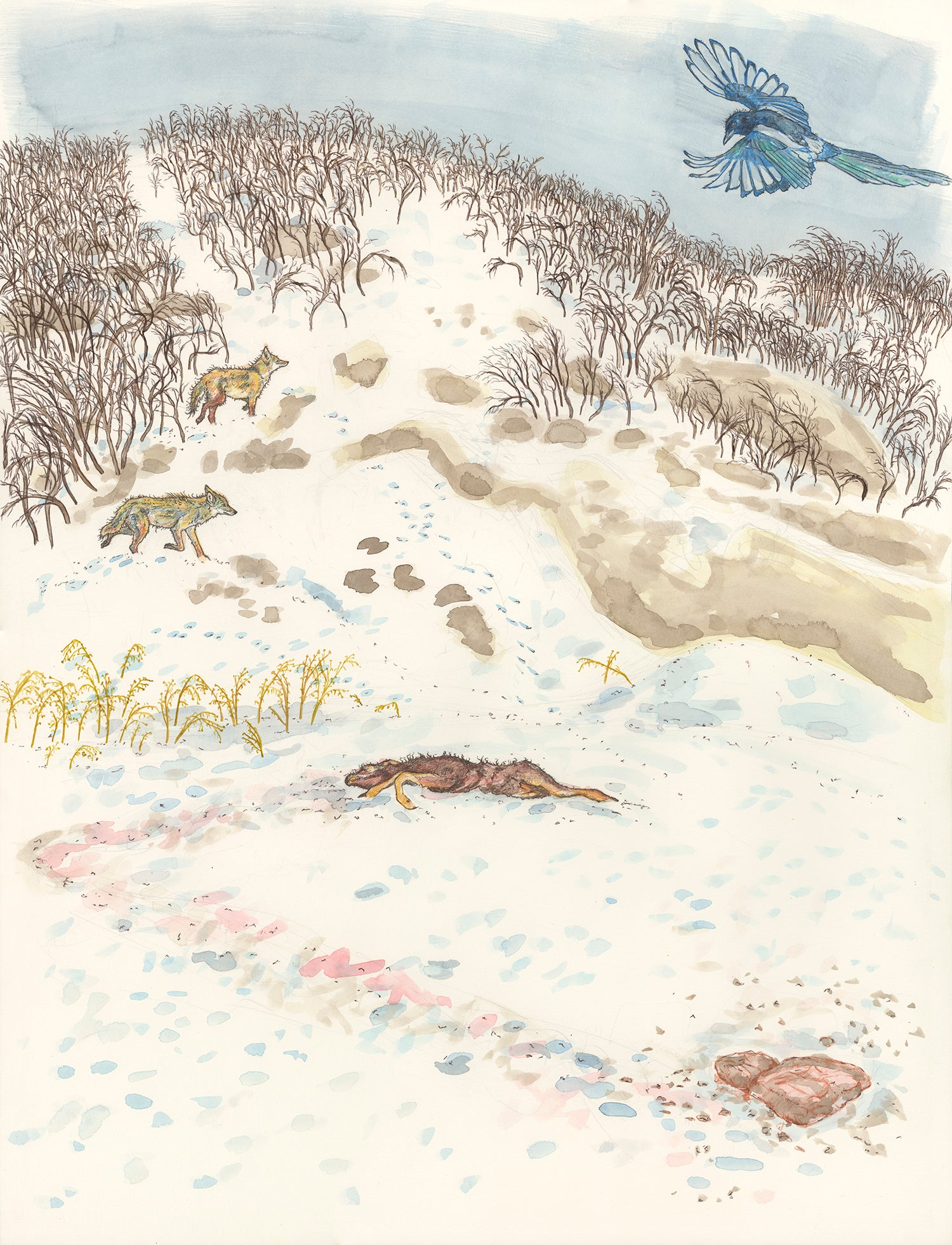 "Image of ""Dead Deer Found by Magpie and Coyotes"" giclee print"
