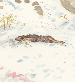 """""""Dead Deer Found by Magpie and Coyotes"""" giclee print"""