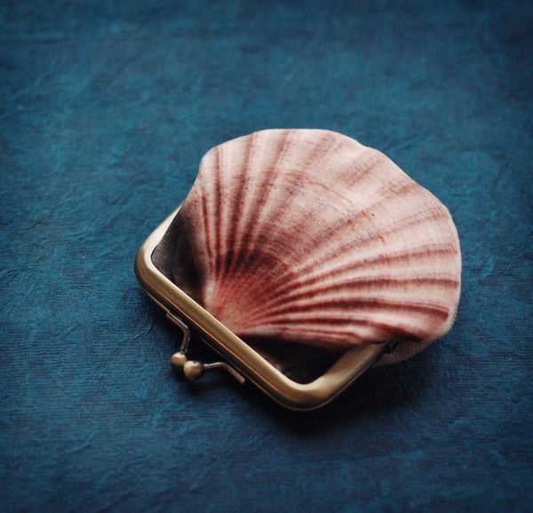 Image of Seashell printed velvet coin purse