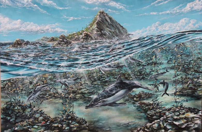 "Image of ""Paradise Point"" print"