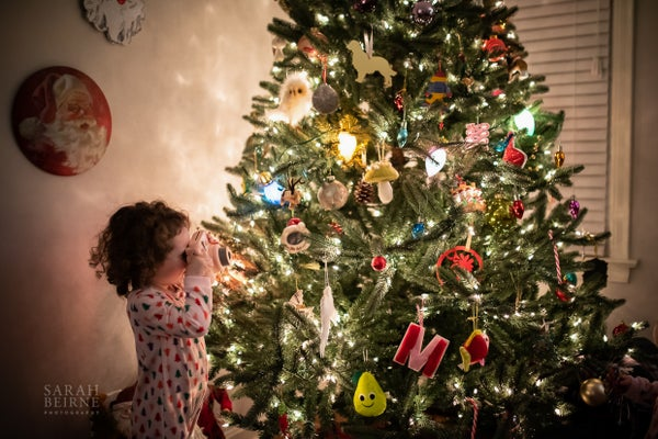 Image of Magical Christmas Tree Sessions