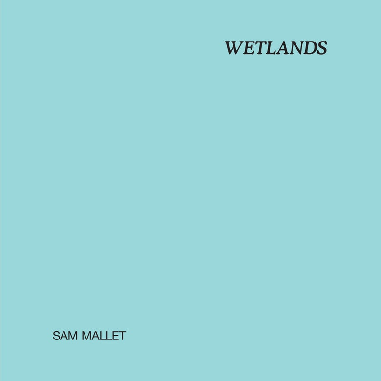 Image of Sam Mallet - Wetlands LP