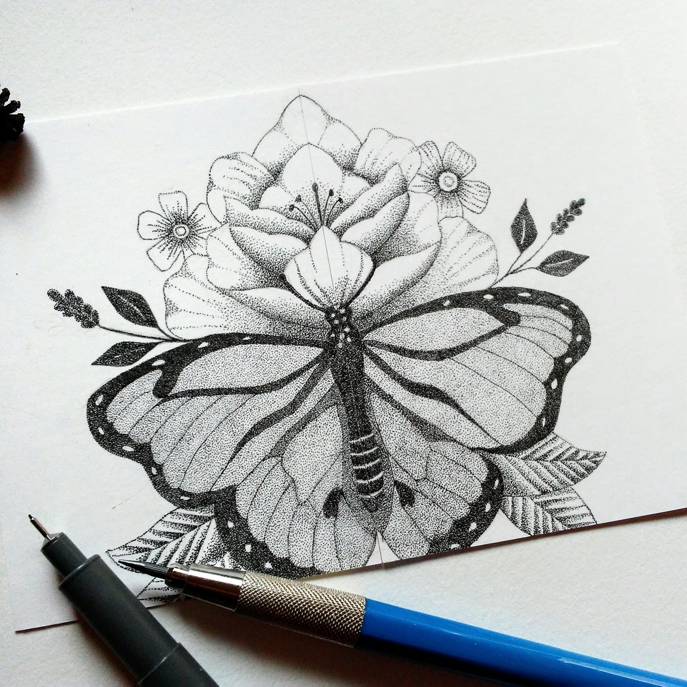 Image of Butterfly Flower