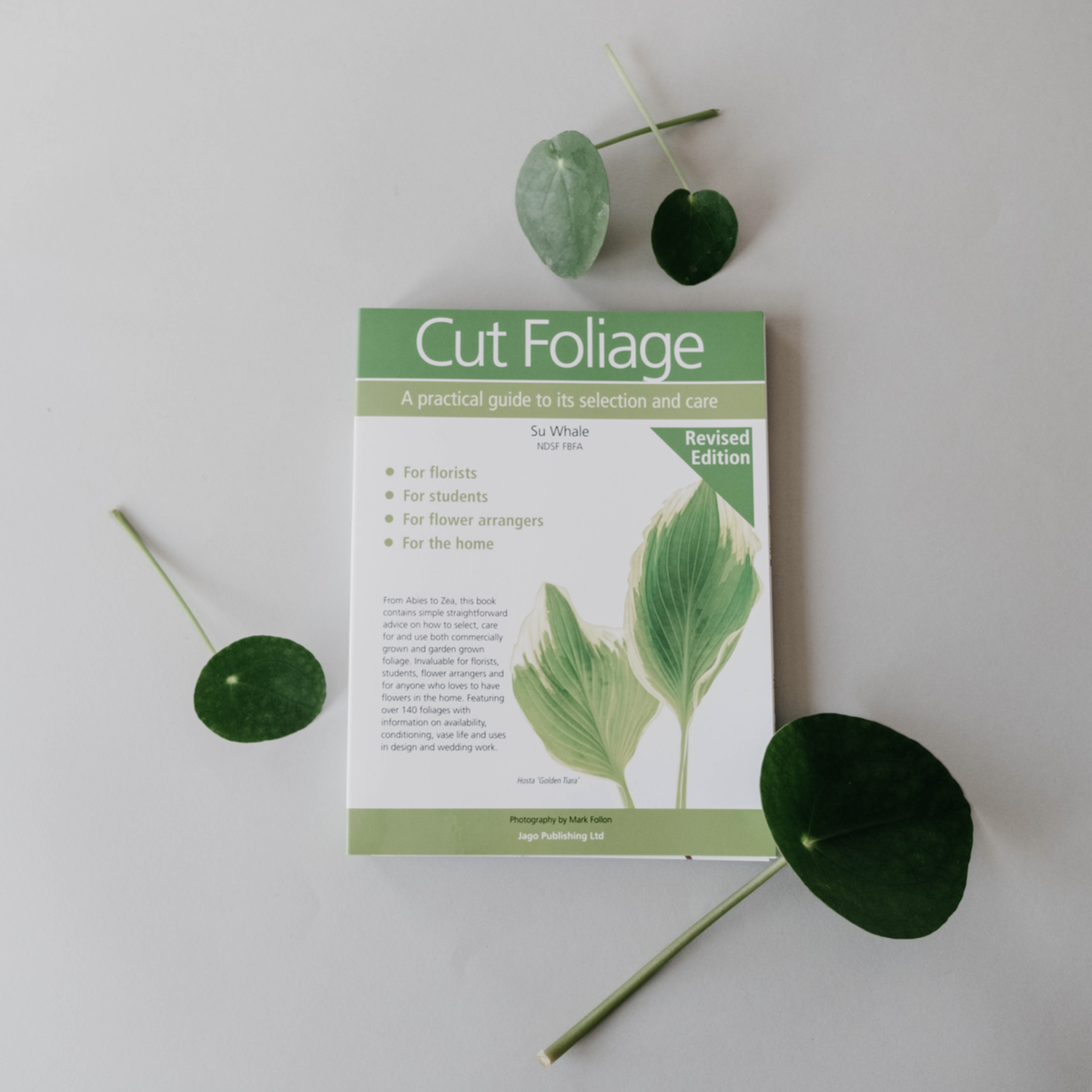 Image of Cut Foliage Book : A Practical Guide to Selection & Care