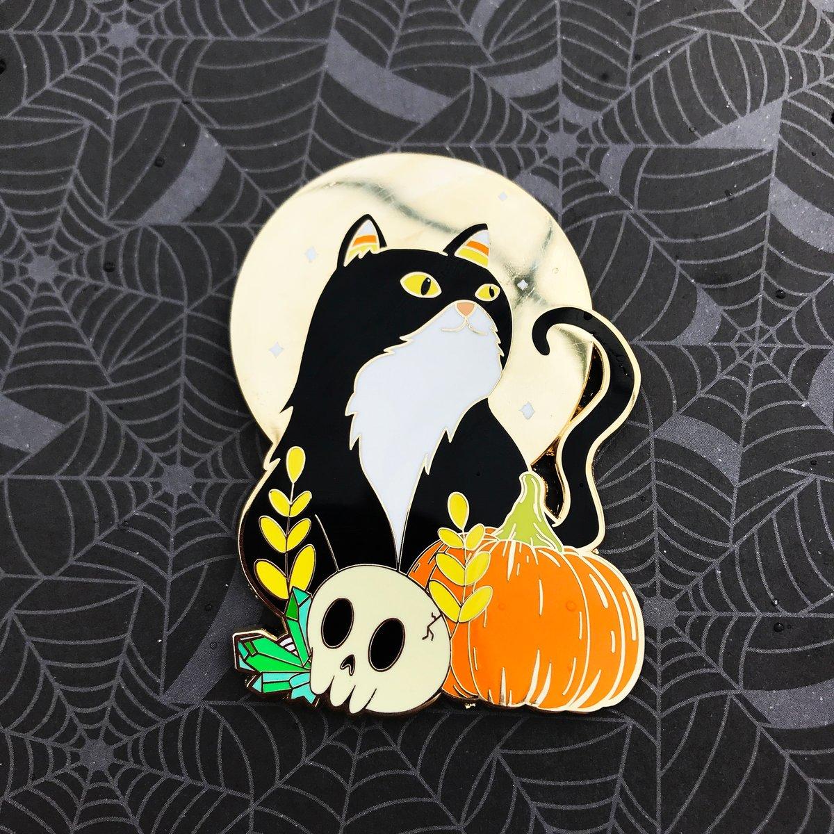 Image of Moon Kitty Pin