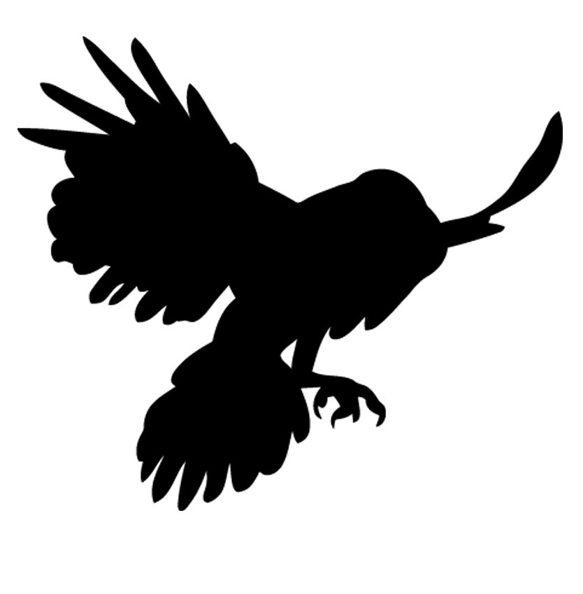 Image of EDIFICE CLOTHING BRAND BLACK RAVEN BIRD DECAL STICKER