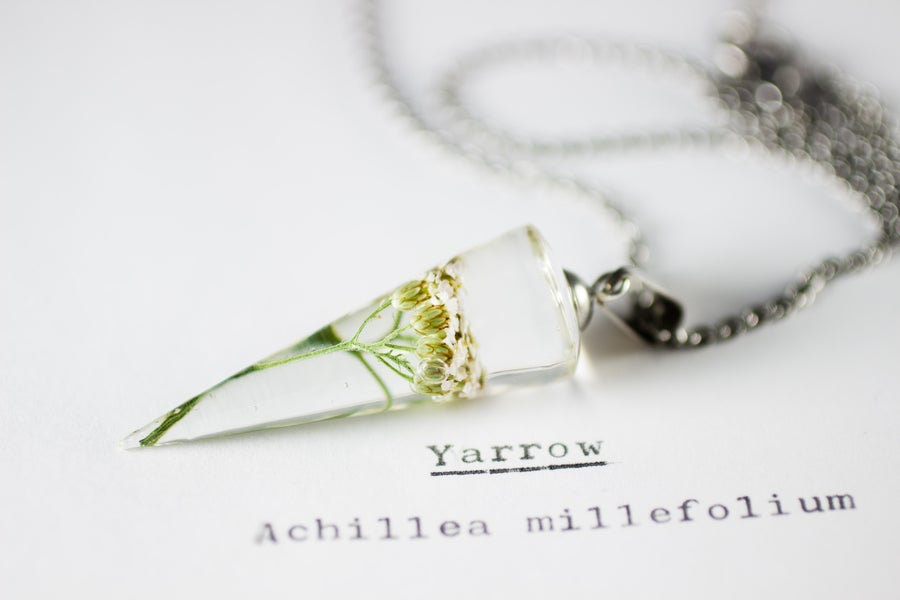 Image of Yarrow (Achillea millefolium) - Conical Pendant #1