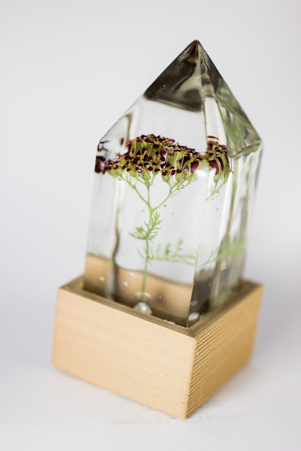 Image of Red Yarrow (Achillea millefolium) - Floral Prism Desk Lamp #2