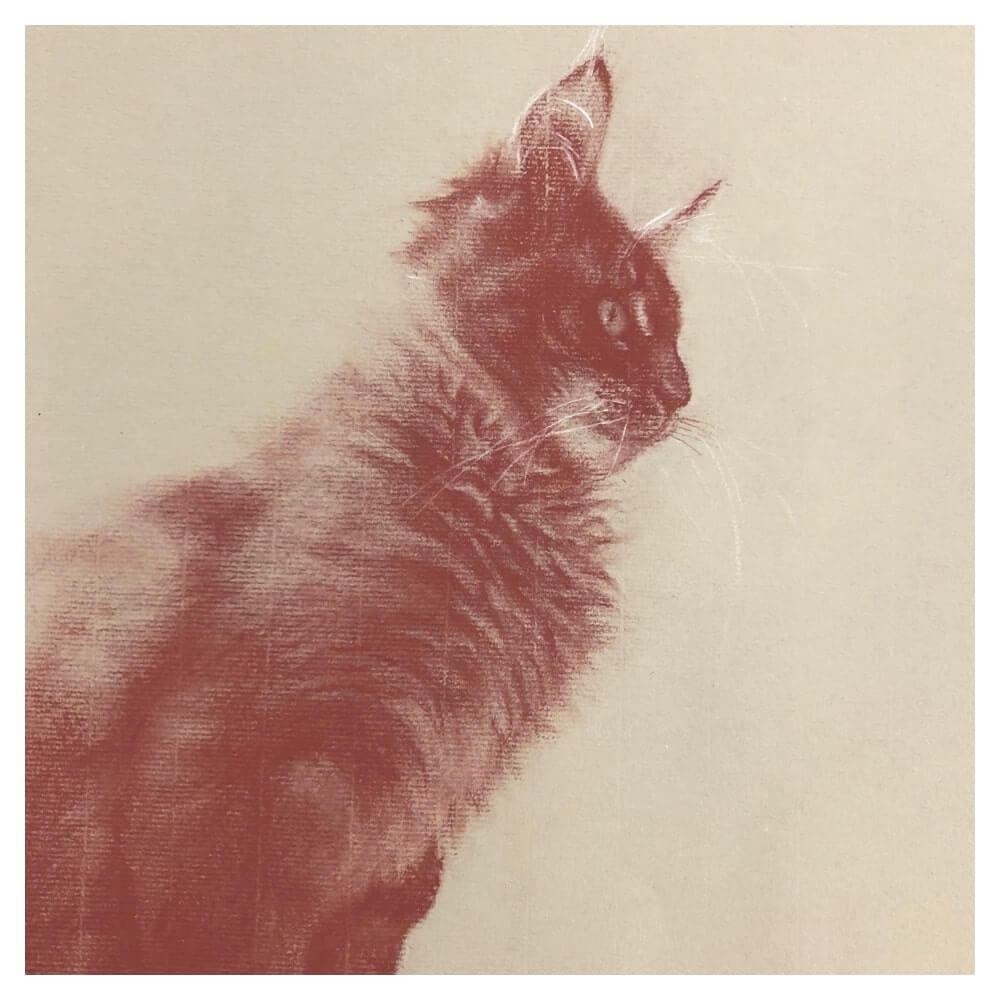 Image of Custom Animal / Pet Portrait