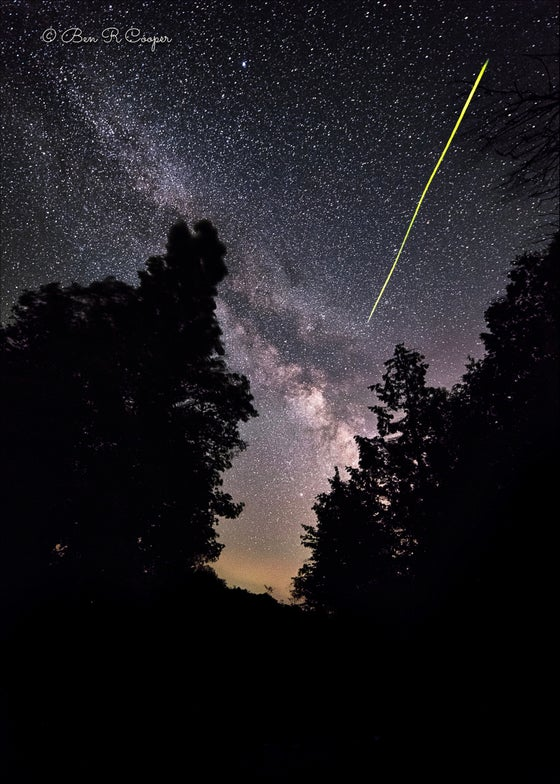 Image of Firefly and the Milky Way