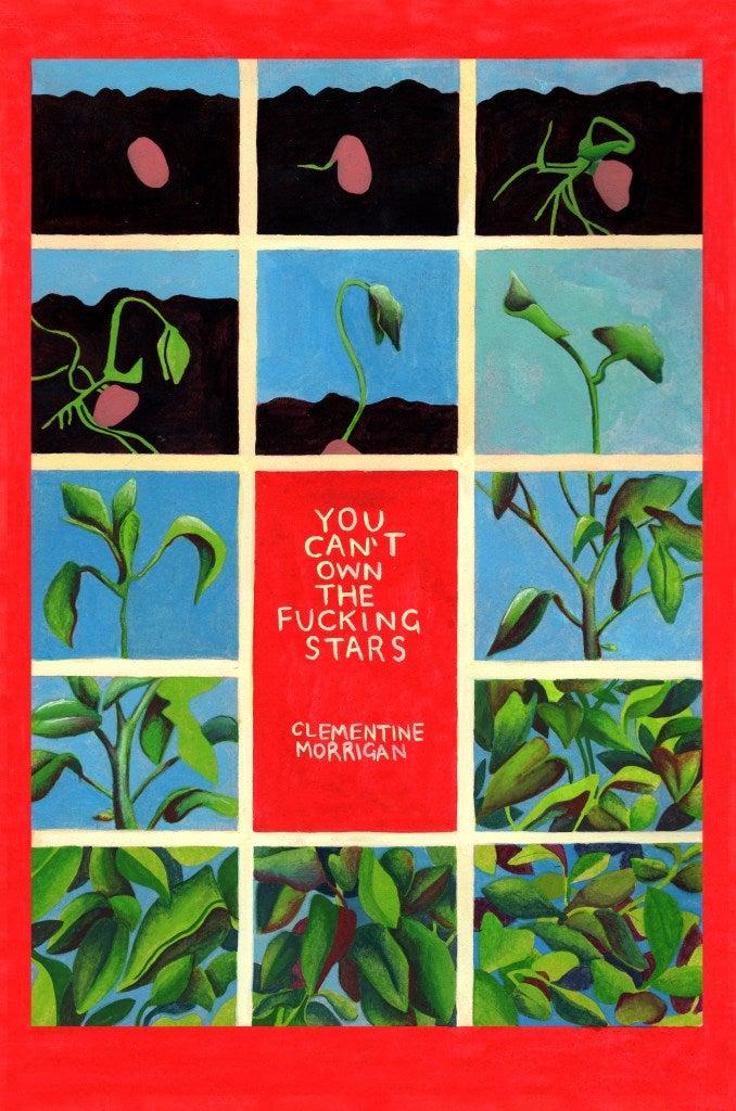 You Can't Own the Fucking Stars (Book)