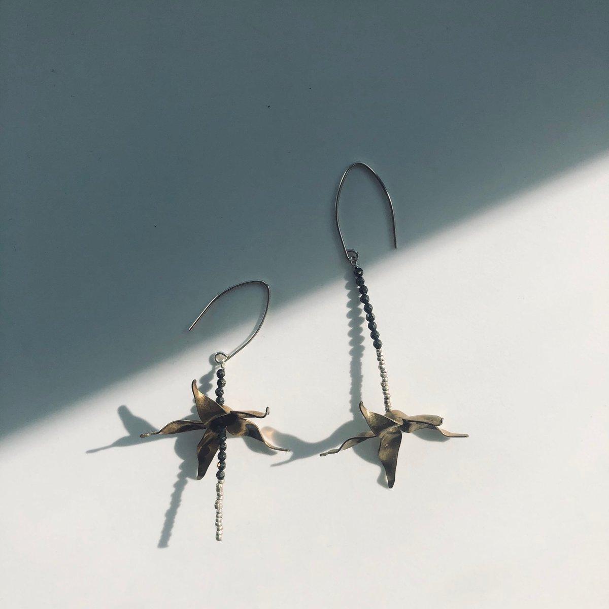 Image of Wings