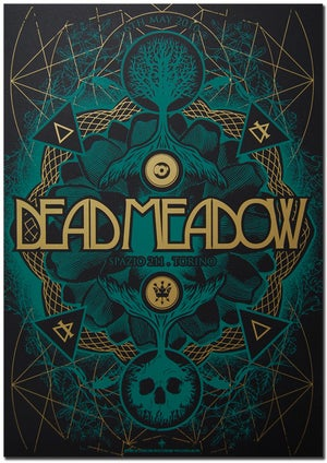 Image of DEAD MEADOW - Torino 2010