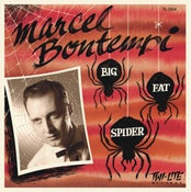 "Image of 7"". Marcel Bontempi : Big Fat Spider.  Ltd edition."