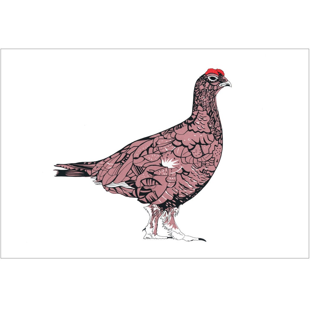 Image of Red Grouse screen print