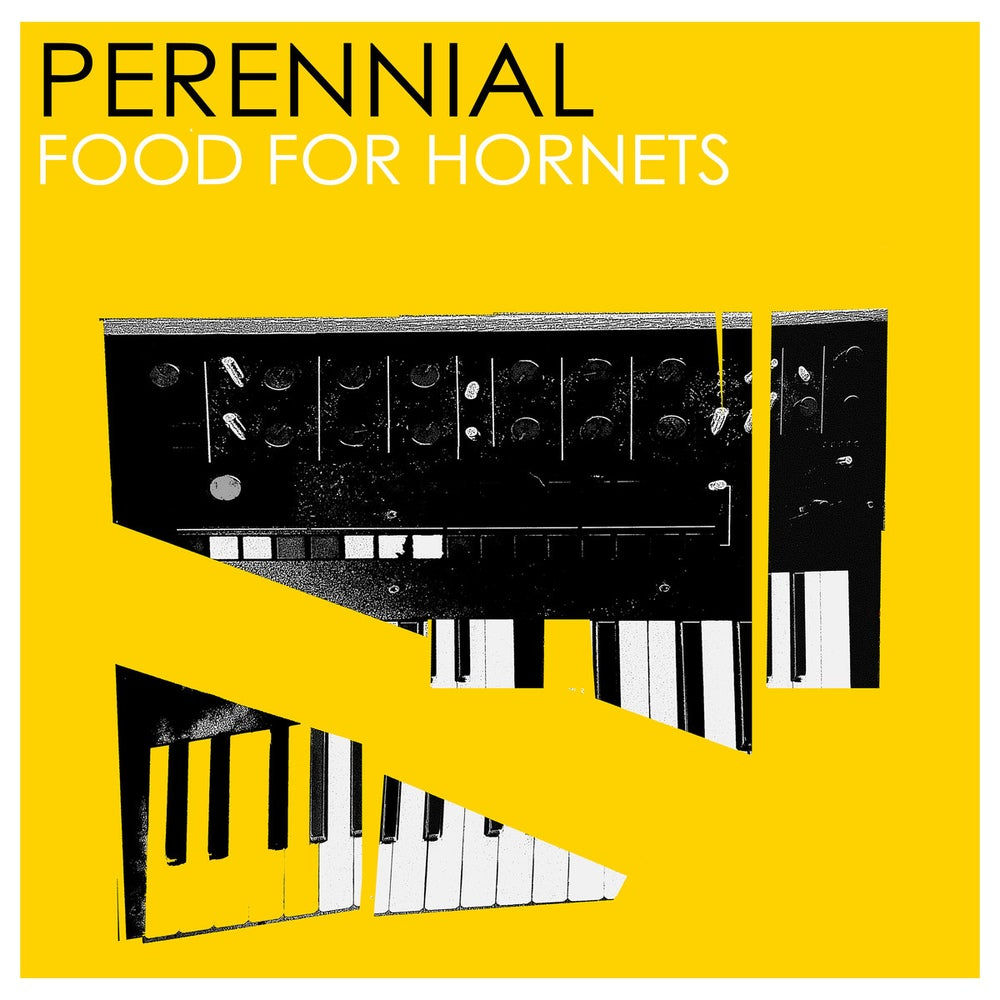 Image of [RSR 021]  Perennial - Food For Hornets EP Cassette Tape