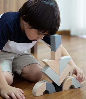 Image of Plan Toys Twisted Blocks