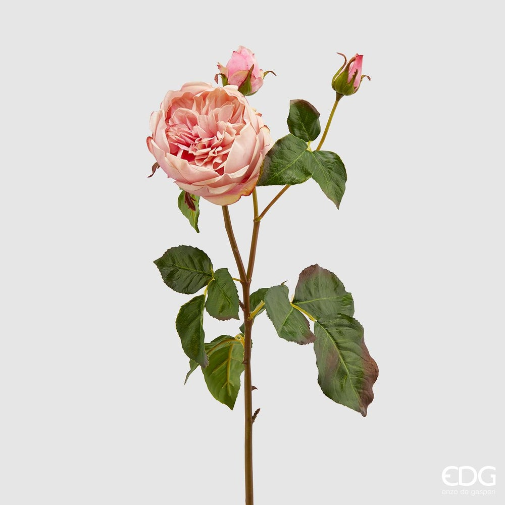 Image of Rose Real Touch