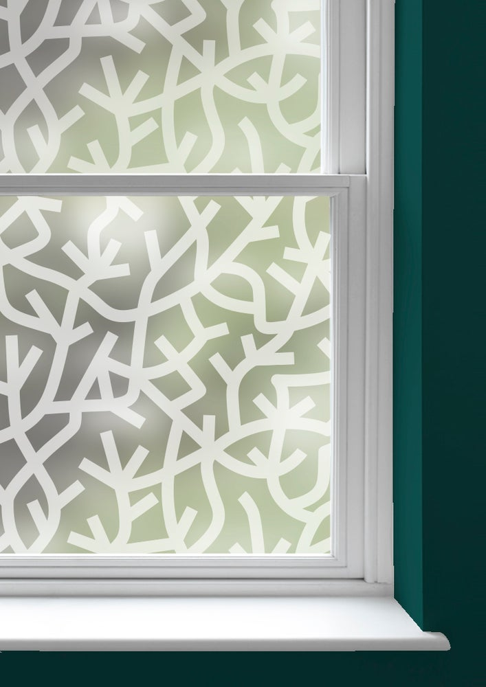 Image of A Forest Window Film