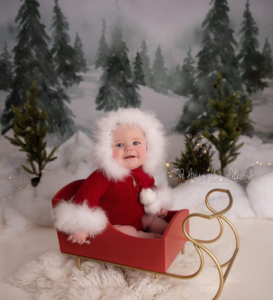 Image of Littlest Christmas