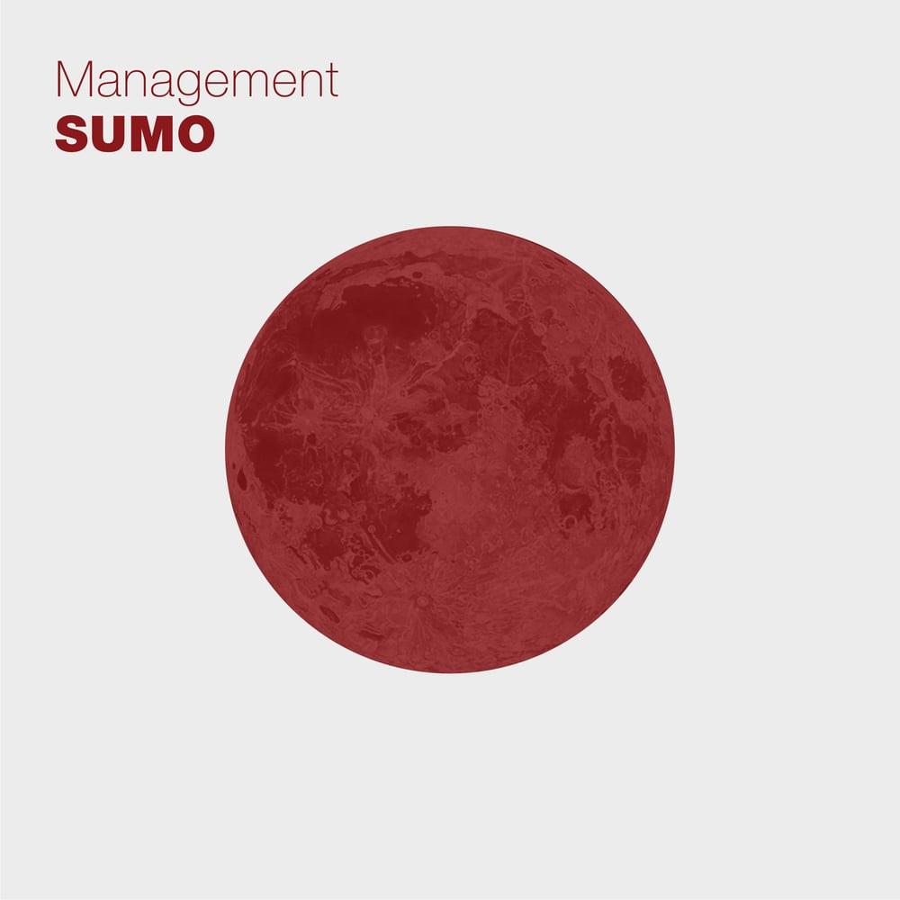 Image of Management - Sumo
