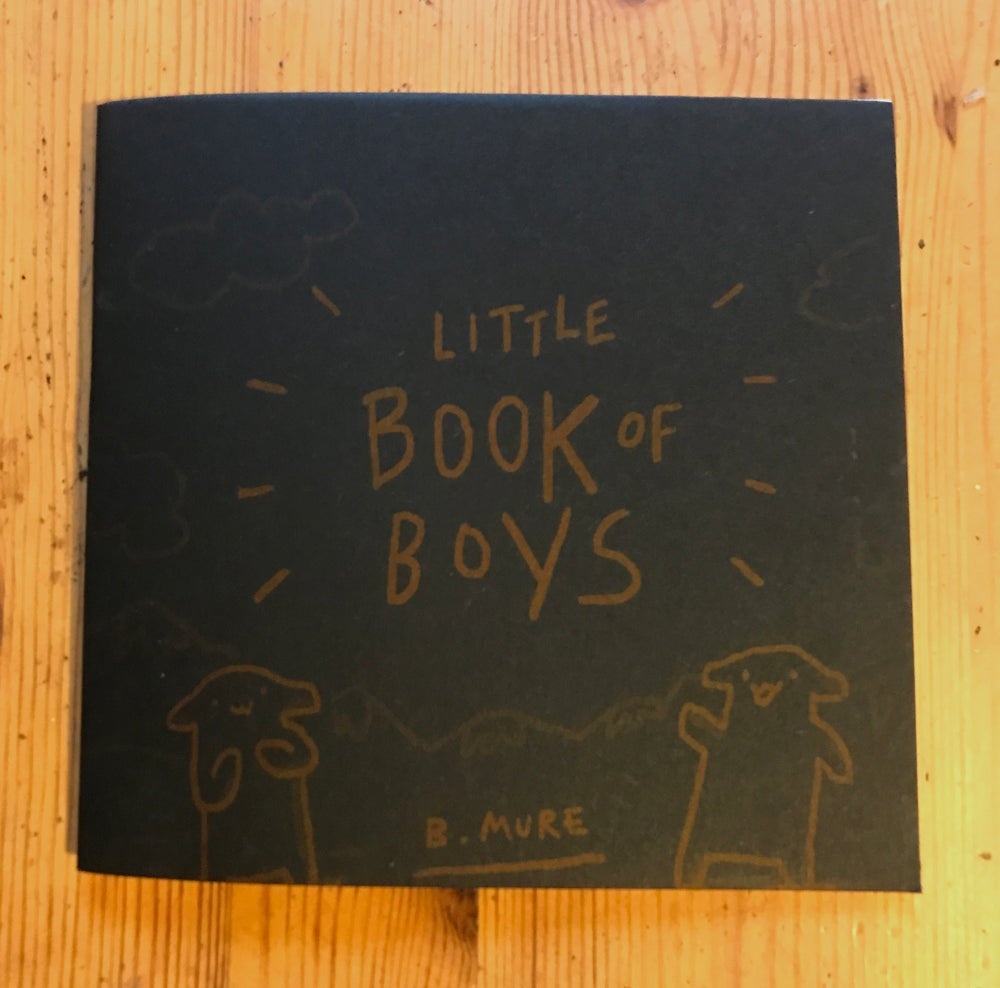 Image of Little Book Of Boys