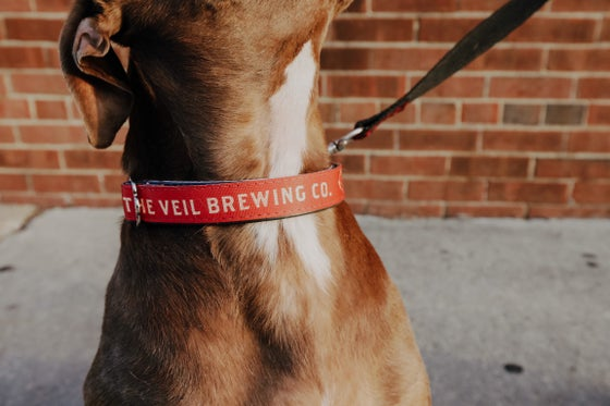 Image of Red/Gold Dog Collars